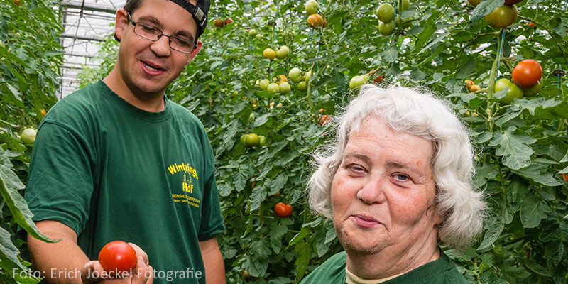 Gemüsegärtner Landwirtschaftsmeister Wintringer Hof